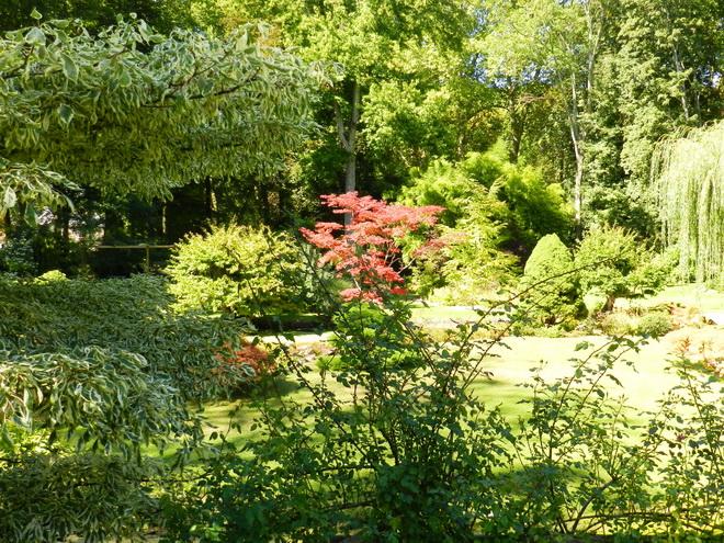 Jardin japonais 2 la r gion parisienne le bassin for Japonais rambouillet