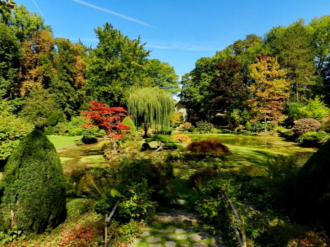 Jardin japonais 7 la r gion parisienne le bassin for Japonais rambouillet
